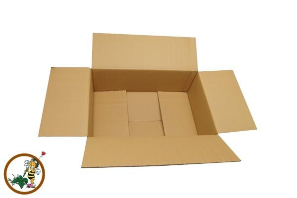Zweiwellige Verpackung WK6B 585x380x200mm
