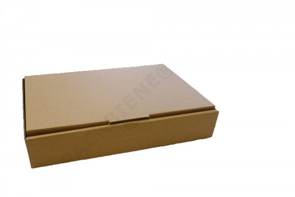 Maxibriefkartonage Packbiene® MB2A