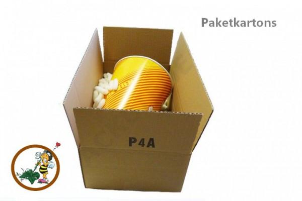 Versandverpackung P4A
